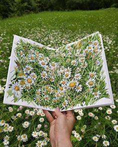 """🌲EVGENYA BABICHEVA (SHEGLOVA)🌲 on Instagram: """"Если начнёшь рисовать одну ромашку, не остановишься, пока не нарисуешь целое поле!😃🌼 Друзья, блокноты советовать не стану, так как рисую в…"""" Watercolor Flowers, Watercolor Art, Picnic Blanket, Outdoor Blanket, Art Journal Inspiration, Illustration Art, Illustrations, Mixed Media, Artist"""