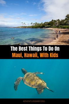 The Best Things To Do In Maui With Kids - Adventure, baby! Hawaii Honeymoon, Hawaii Vacation, Maui Hawaii, Hawaii Travel, Travel With Kids, Family Travel, Travel Usa, Travel Tips, Travel Guides