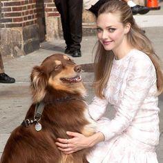 Amanda Seyfried  #natural #beauty and her #furryfriend #nationaldogday