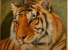 tigre (oleo sobre tela)