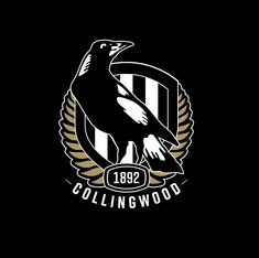 Eye candy for women. The mighty Magpies. A fast-moving, high flying and long kicking game with lots of eye- candy for women who love men. Lupus Facts, Collingwood Football Club, Magpie Tattoo, Australian Football, Sports Art, Art Logo, Machine Quilting, Football Team, Machine Embroidery Designs