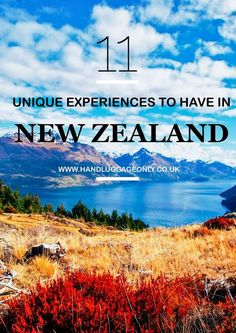 11 Unique Experiences You Need To Have In New Zealand
