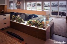 Living Room Aquarium Inspired Design 6 On Home Architecture Design Ideas