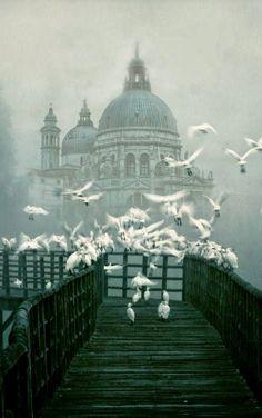 Santa Maria della Salute, Venice, Italy. Beautiful photograph.