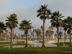 Venice Beach.  Went rollerblading here in HS and got to check out the gym rats at the original Golds Gym!