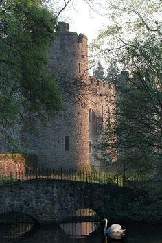 Allington Castle, UK