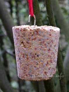 Basic Christmas Craft Ideas - Winter Bird Food for Outdoors