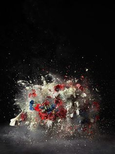 Exploding flowers //  Conflicts may be the sources of defeat, lost life and a limitation of our potentiality but they may also lead to greater depth of living and the birth of more far-reaching unities, which flourish in the tensions that engender them    Photographs by Ori Gersht  Title: Karl Jaspers