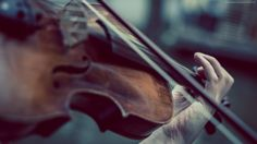 violin wallpaper music