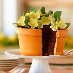 Flower Pot Cake! Instructions attached but butter cream and fondant flowers could make this cake event yummier!