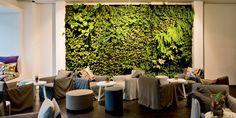 Conscious Hotel Vondelpark | Gervasoni