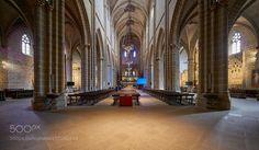 Catedral de Santa María la Real de Pamplona by neobit