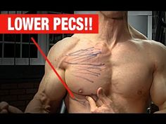 Single-arm Cable Pec Crossover [Lower Pecs, i.e., activation of the abdominal…