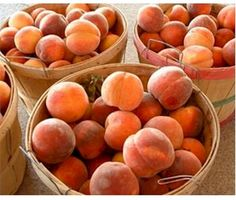Louisiana peaches (from the Ruston area in North Louisiana) just can't be beat!