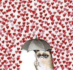 amazon anti valentines