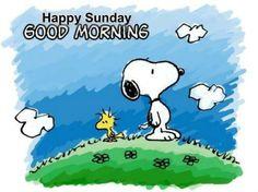 Happy Sunday, Good Morning.