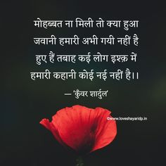 Ig Captions, Shayari Image, Love, Learning, Pictures, Quotes, Amor, Photos, Quotations