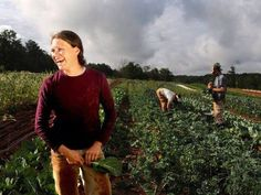 Paige Witherington is the farmer at Serenbe Farms, a 30-acre certified organic and biodynamic farm adjacent to a housing development outside...