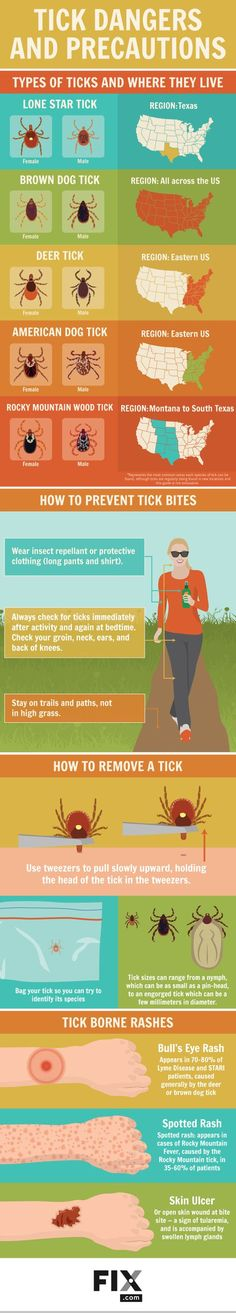 Learn to identify ticks, perform regular tick checks, and what to do if you spot a tick bite.