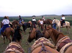 Campo- Uruguay rural
