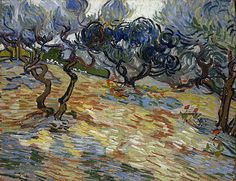 Vincent van Gogh / Olive Trees / 1889 / National Scottish Gallery