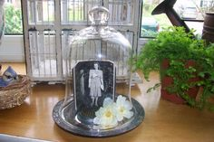 Small Glass Cloche Dome Display Flower Frog Shabby by gardenofchic, $19.00