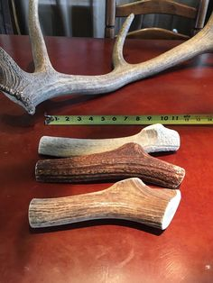 JUMBO Elk **NATURAL SHED** Antler Premium Dog Chews