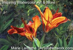 """Inspiration for artists! This is """"First Light--Wood Lily"""" by Marie Lamothe, featured in Splash & ArtistsNetwork.com. #watercolor #watercolour #painting #art #flowers #floral"""