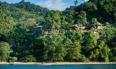 Go slow on Tobago: an eco-hideaway delivers the quiet life | Travel | The Guardian