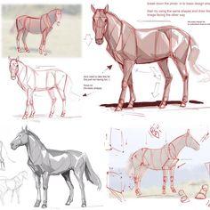 Horse Drawings, Realistic Drawings, Animal Drawings, Art Drawings, Doodle Drawing, Pony Drawing, Painting & Drawing, Horse Drawing Tutorial, Animal Skeletons