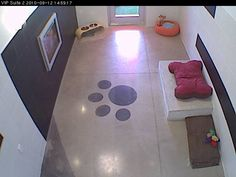 décor, layout; simple built in 'bed;' paw print on floor