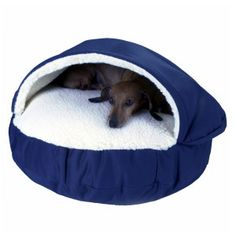 Snoozer® Cozy Cave Pet Bed, great for dogs who like to snuggle under the covers - PetSmart