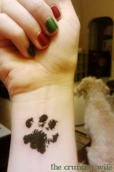 Effy and Shea's real paw prints on my foot