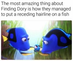 Meme about finding Dory and how amazing it is that they managed to put a receding hairline on a fish.