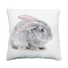 Coussin 30x30cm motif lapin Multicolore - Baby pets - Les coussins enfants - Coussins décoratifs - Linge de maison - Décoration d'intérieur - Alinéa