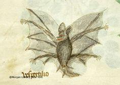 Compendium Salernitanum, M.873 fol. 91r - Images from Medieval and Renaissance Manuscripts - The Morgan Library & Museum