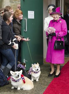 Pin for Later: One Is Not Amused: A Guide to the Queen's Many Faces When She Spots a Corgi