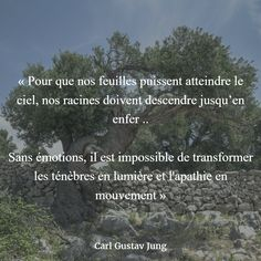 """""""In order for our leaves to reach the sky, our roots must descend to hell. Without emotions, it is impossible to transform darkness into light and apathy in motion"""" (Carl Gustav Jung) Gustav Jung, Quote Citation, Carl Jung, To Reach, Infj, Self Development, Words Quotes, Light In The Dark, Quotations"""