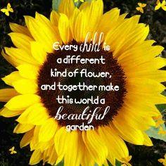 Sunflower, children quote, garden