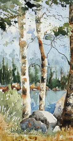 Peppermint Patty's Papercraft: Sunday Watercolors! Birch trees and archipelago