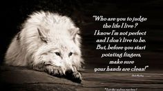 Photo of wolf poems for fans of Wolves. wolf peoms of spirit and soul