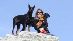 Come scegliere la vacanza più adatta al tuo cane: lago, campagna, città d'arte