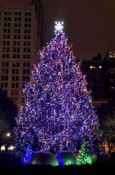 Travel to Chicago this winter holiday! Visit this fun and beautiful Christmas tree in Millenium Park.