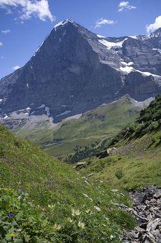 Kleine Scheidegg the face of the Eiger