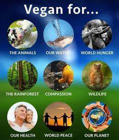#vegan for life