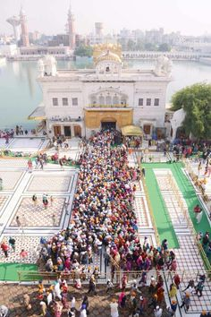 Sikh devotees pay their respects at the Golden Temple in Amritsar on November 24, 2013, on the occasion of the Martyrdom Anniversary of the Ninth Guru of Sikhism, Sri Guru Teg Bahadur.