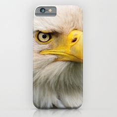 American Bald Eagle Portrait iPhone & iPod Case