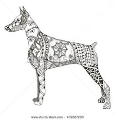 Doberman pinscher zentangle stylized, vector, illustration, freehand pencil, hand drawn, pattern. Zen art. Ornate vector. Lace. Dog chinese zodiac sign.