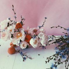 apricot. -------------  #ljfloral   #summervibes