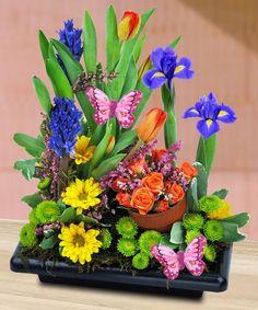 """""""A Spring Garden Favorite"""""""